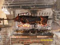 Pig being roasted